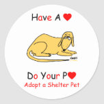 Adopt a Shelter Animal Classic Round Sticker