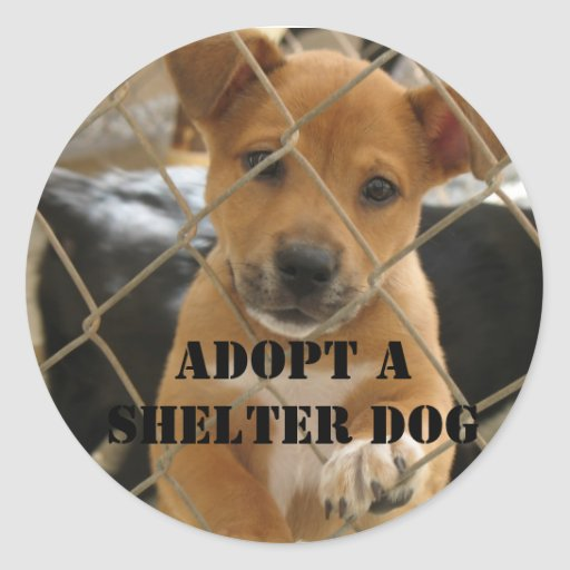 ADOPT A SHELTER DOG ROUND STICKERS