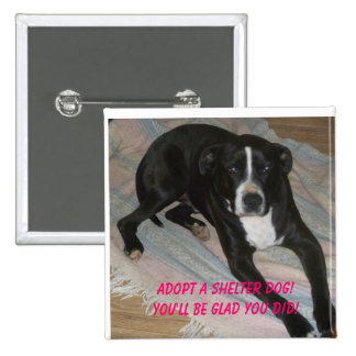 Adopt a Shelter Dog Today! Pinback Button