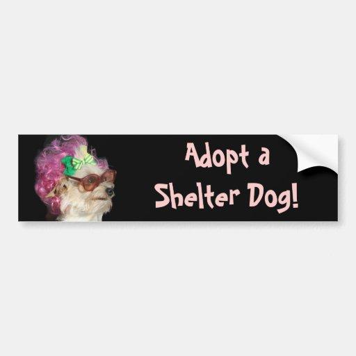 Adopt a Shelter Dog Toy Mix Dog Bumper Sticker