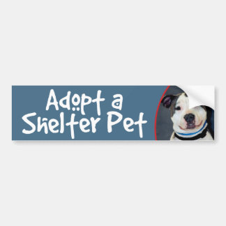 Adopt a Shelter Pet American Staffordshire Terrier Car Bumper Sticker