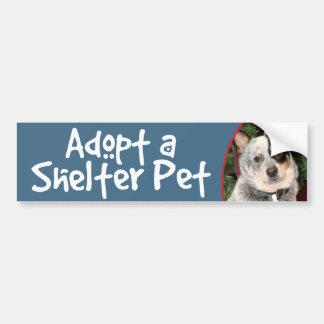 Adopt a Shelter Pet Australian Cattle Dog Car Bumper Sticker