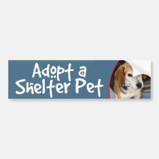 Adopt a Shelter Pet Beagle Photo Bumper Sticker