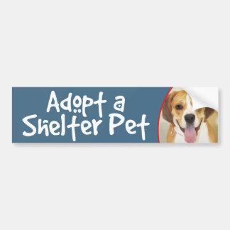 Adopt a Shelter Pet Bulldog-Beagle Mix Bumper Sticker