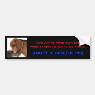 Adopt A Shelter Pet! Bumper Sticker