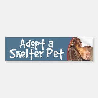Adopt a Shelter Pet Doberman Bumper Sticker