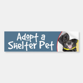Adopt a Shelter Pet Lab/German Shorthaired Pointer Car Bumper Sticker