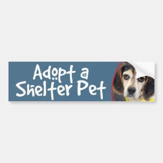 Adopt a Shelter Pet Sad Beagle Bumper Sticker