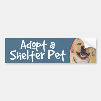 Adopt a Shelter Pet Yellow Lab Car Bumper Sticker