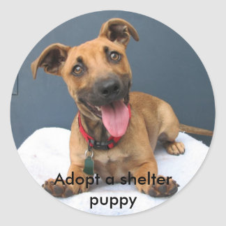 Adopt a shelter puppy 023 classic round sticker