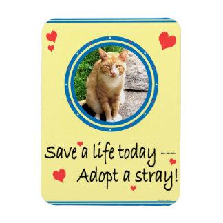 """Adopt A Stray 2"" Photomagnet Rectangular Photo Magnet"