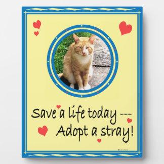 Adopt a Stray #2 Plaque