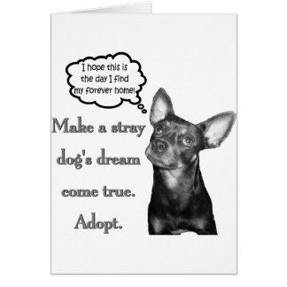 Adopt A Stray Card