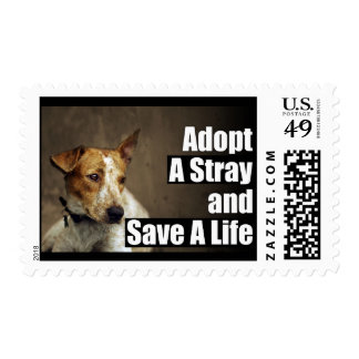 Adopt A Stray Stamp