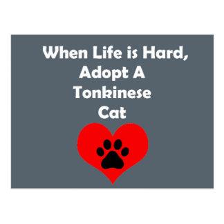 Adopt A Tonkinese Cat Postcard