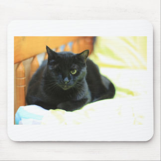 ADOPT Blanche Mouse Pad