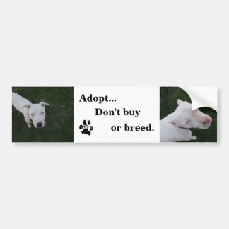 Adopt bumpersticker bumper sticker