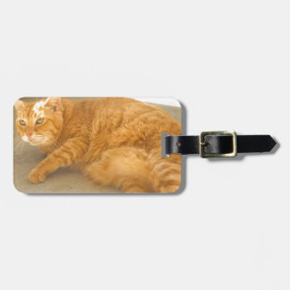ADOPT Butter Bag Tag