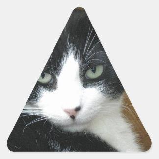 ADOPT Do-Drop Triangle Sticker