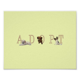 Adopt Dogs Poster