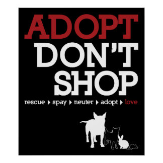 Adopt Don't Shop Poster