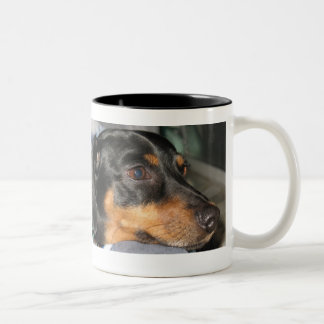 Adopt From a Shelter Two-Tone Coffee Mug
