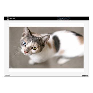 ADOPT Fushia Decals For Laptops