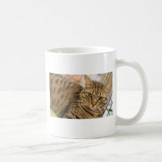 ADOPT Gracie Coffee Mug