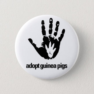 Adopt Guinea Pigs Button - Guinea Pig Today