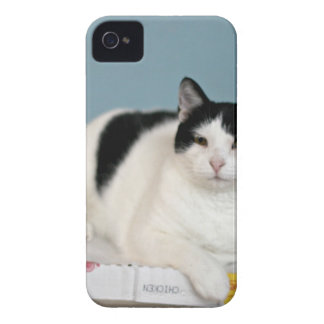 ADOPT Hudson iPhone 4 Case