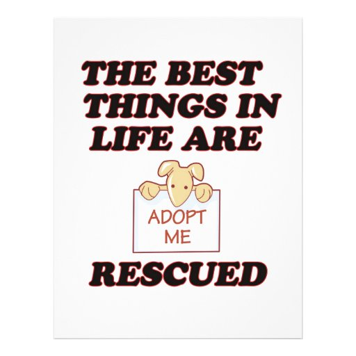28 animal rescue flyers animal rescue flyer templates and printing zazzle. Black Bedroom Furniture Sets. Home Design Ideas