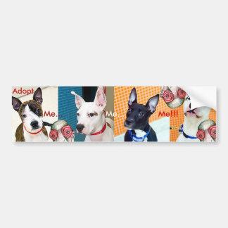 Adopt Me... Me... Me!!! Bumper Sticker