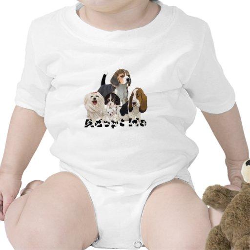 Adopt me.png baby creeper