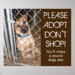 """""""Adopt no hace compras por favor"""" adopta un poster"""