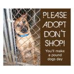 """""""Adopt no hace compras por favor"""" adopta una foto"""