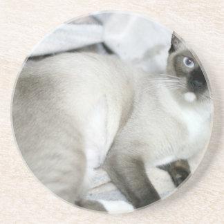ADOPT Opal Sandstone Coaster