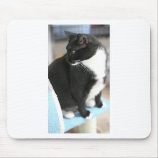 ADOPT Orion Mouse Pad