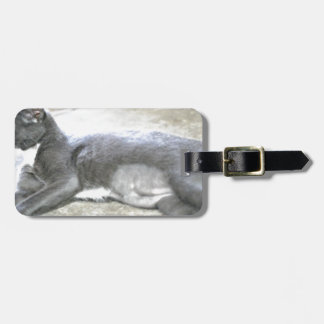 ADOPT Pepper Luggage Tag