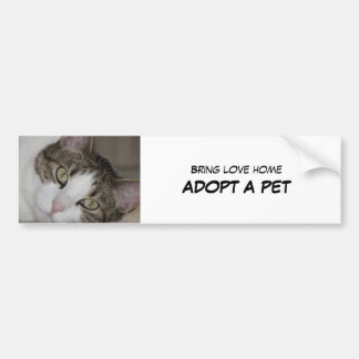 Adopt Pet Bumper Sticker II