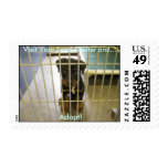 Adopt! Postage Stamp