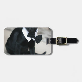 ADOPT Pugsy Tag For Luggage