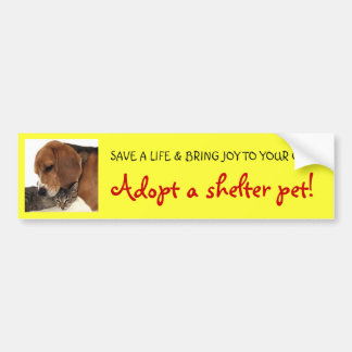 Adopt Shelter Pet, Shelter Dog, Shelter Cat Car Bumper Sticker