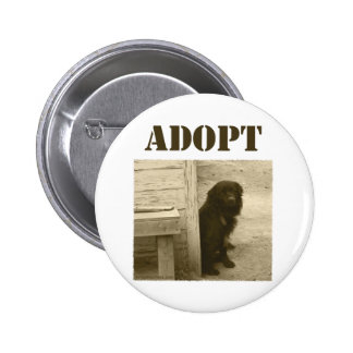 Adopt stray dog pinback button