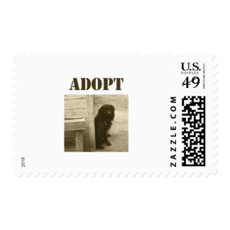 Adopt stray dog postage stamps