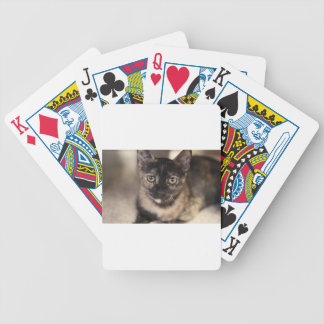 ADOPT Tiffany Bicycle Playing Cards