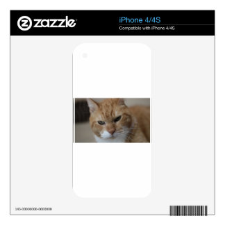 ADOPT Tiger Skin For The iPhone 4S