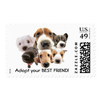 Adopt your BEST FRIEND! Stamps