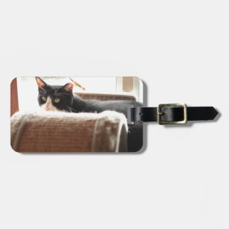 ADOPT Zoey Tag For Luggage