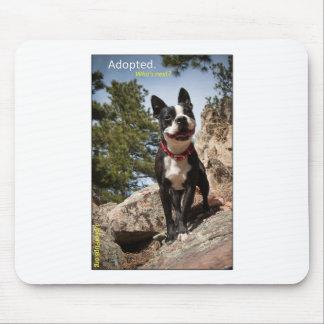 Adoptado. Boston Terrier Alfombrilla De Raton