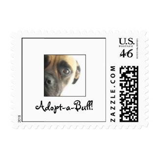 ¡Adoptar-uno-Bull